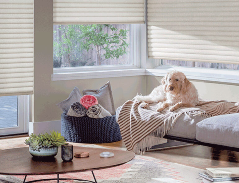 An Image Representing The Roller Shutters For Pets Concept.